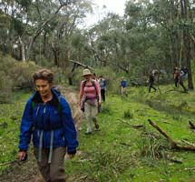 A day walk along peaceful bushland tracks refreshes the soul.